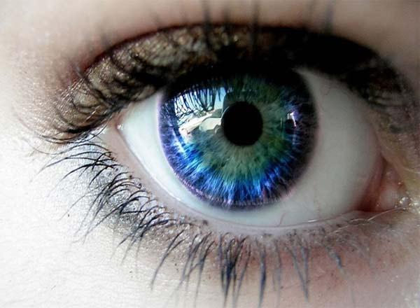 Можно ли вырастить искусственный глаз? Оказывается, да